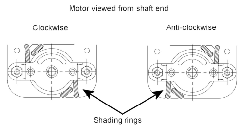Skeleton_motors_diagram
